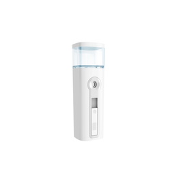 Mini nano handy mist spray facial steamer