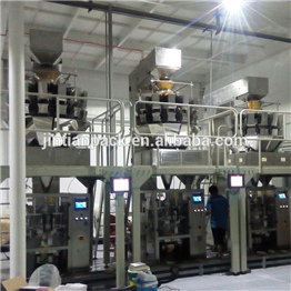 JT-420W fully automatic chips packaging machine production line vertical packing machine