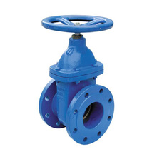 Resilient Wedge Gate Valve Flanged End