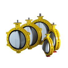 Cast Iron Certen Line Butterfly Valve For Electric Actuator