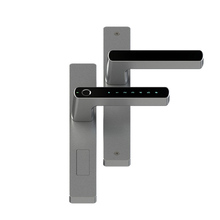 Smart biometric lock for aluminum alloy double sided sliding door