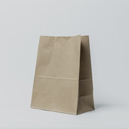 Plain Brown kraft paper no handle