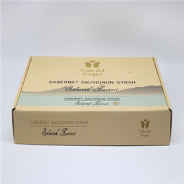 Custom cardboard ecommerce packaging shipping paper mailer carton box