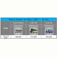 Narita Airport to Tokyo Hot Sale Airport Customs Clearance Service