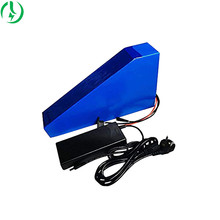 Professional Manufacture Electric Bike Lithium Battery Pack  Triangle Bag Ebike Battery for Electric Bicycle Conversion Kit