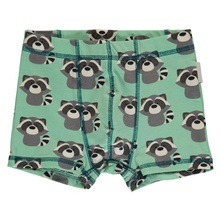 Latest design cute kids boys egyptian cotton underwear
